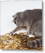 Cat With Coins Metal Print