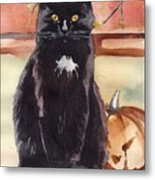 Cat With The Pumpkin Metal Print