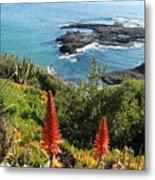 Catalina Island Coastline Metal Print