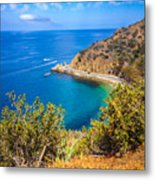 Catalina Island Lover's Cove Picture Metal Print