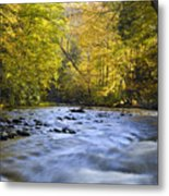 Cataloochee Valley River Metal Print