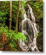 Cataract Falls In Great Smoky Mountains National Park Metal Print