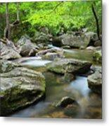 Catawba River In Summer Metal Print