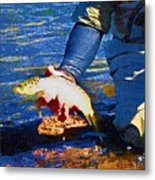 Catch And Release Metal Print