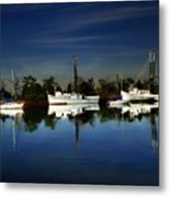 Catching The Morning Tide Metal Print