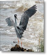 Catching The River Breeze Metal Print