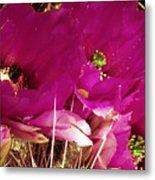 Catcus Flower Metal Print