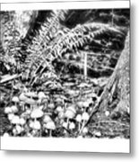 Caterpillars Playground 2 Metal Print