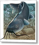 Catfish Metal Print by Valer Ian