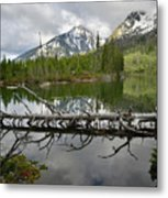 Cathedral Group Reflection On String Lake Metal Print