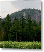 Cathedral Ledge North Conway Nh Metal Print