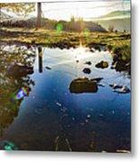 Catherine Creek Pond Metal Print