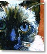 Cats Eyes 13 Metal Print
