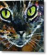 Cats Eyes 16 Metal Print