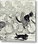 Cats In A Bicycle Race, Hyde Park, 1896 Metal Print