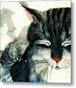Cats Whiskers Metal Print