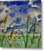 Cattails And Moonlight Metal Print