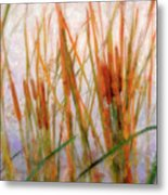 Cattails By The Lake Metal Print