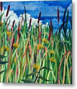 Cattails Metal Print by Helen Klebesadel