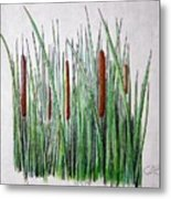 Cattails 3 Metal Print