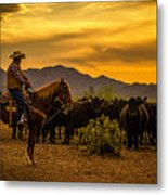 Cattle Drive 41 Metal Print