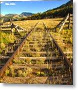Cattle Track Guard Metal Print