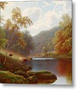 Cattle Watering Along The River Wharfe Metal Print