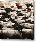 Cattle With Snow On Their Backs Metal Print