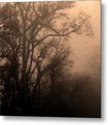 Caught Between Light And Dark Metal Print
