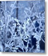 Caught In The Ice Metal Print