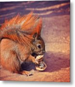 Caught Red Handed Metal Print