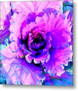 Cauliflower Abstract #8 Metal Print