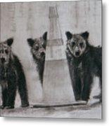Caution Bears Metal Print