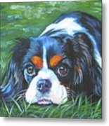 Cavalier King Charles Spaniel Tricolor Metal Print by Lee Ann Shepard