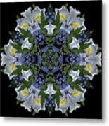 Ceanothus Iris Medley 2 Metal Print