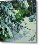 Cedar And Snow Metal Print
