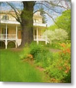 Cedar Grove In Spring Metal Print