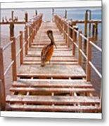 Cedar Key Wharf Metal Print