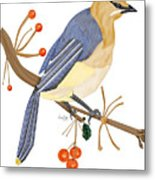 Cedar Waxwing In The Berries Metal Print