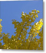 Celebration In Blue And Yellow Metal Print