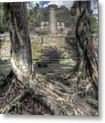 Celestial Roots Metal Print