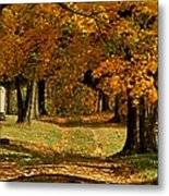 Cemetary Road In Autumn Metal Print