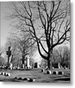 Cemetery 5 Metal Print