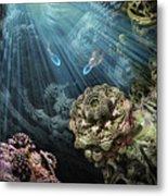 Cenote Metal Print