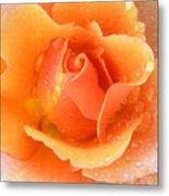 Center Of Orange Rose Metal Print