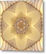 Center Star-flower Metal Print