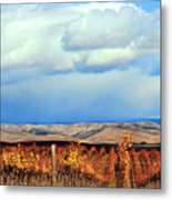 Central Coast Harvest Metal Print