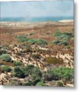 Central Coast Sand Dunes II Metal Print