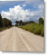 Central Florida Back Road Metal Print