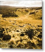 Central Highlands Of Tasmania Metal Print